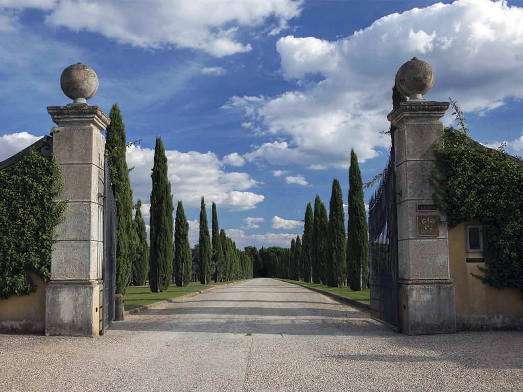 Il Borro Vinery Tuscany Italy For Destination Weddings.jpg