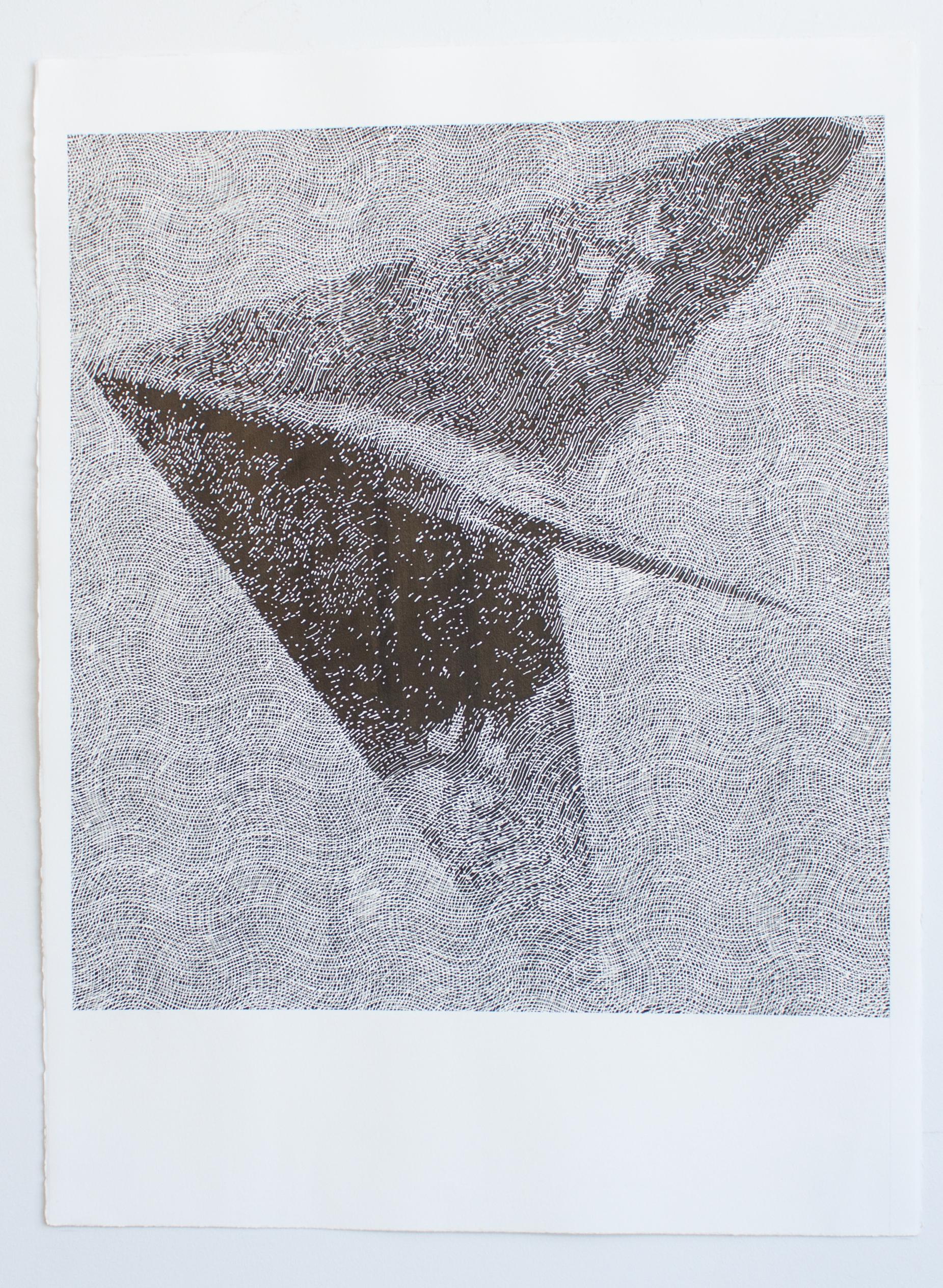 Lippisch Delta Wing