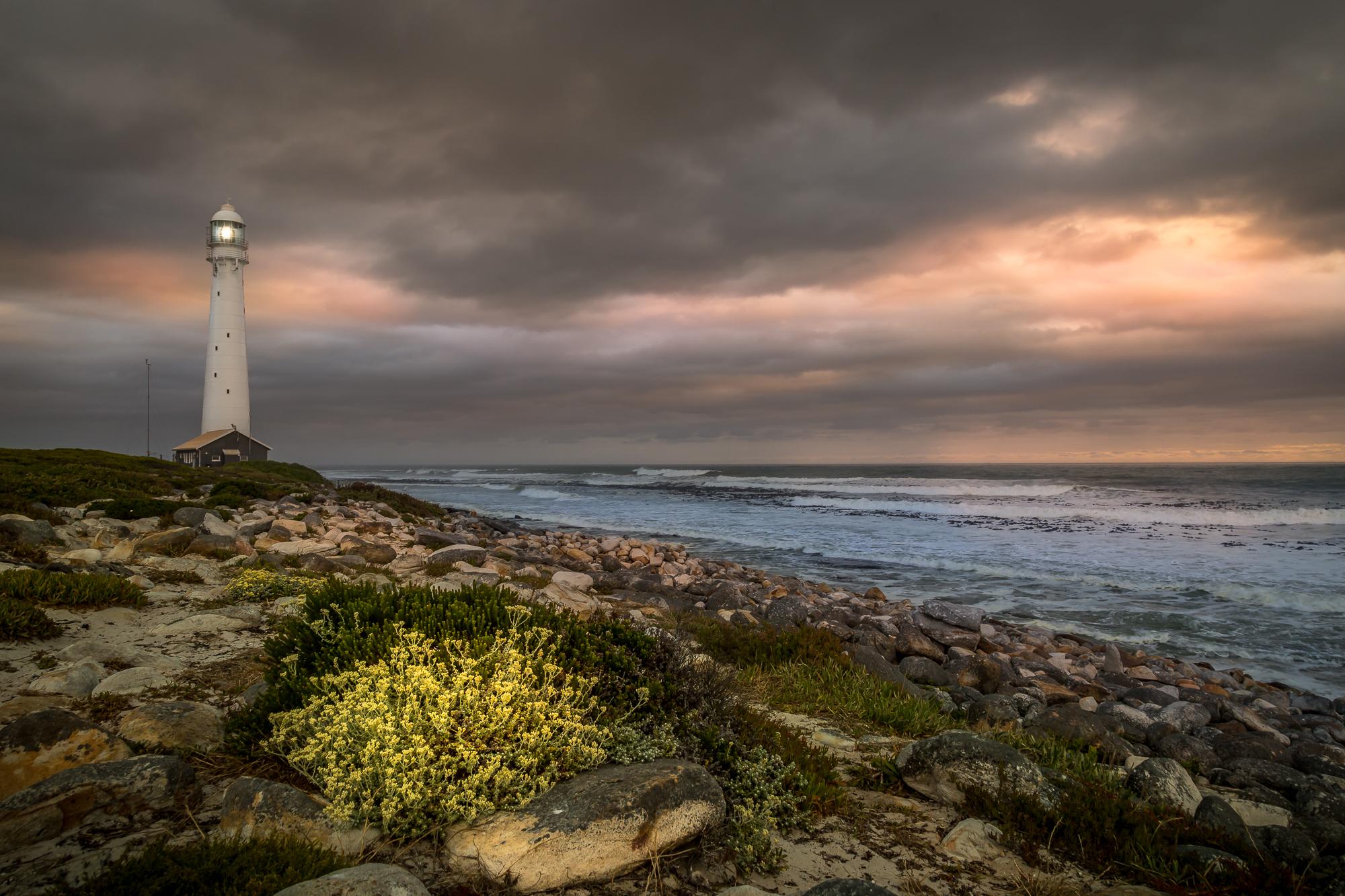 Thanks to David Kooijman Photography  www.naturephoto.tours