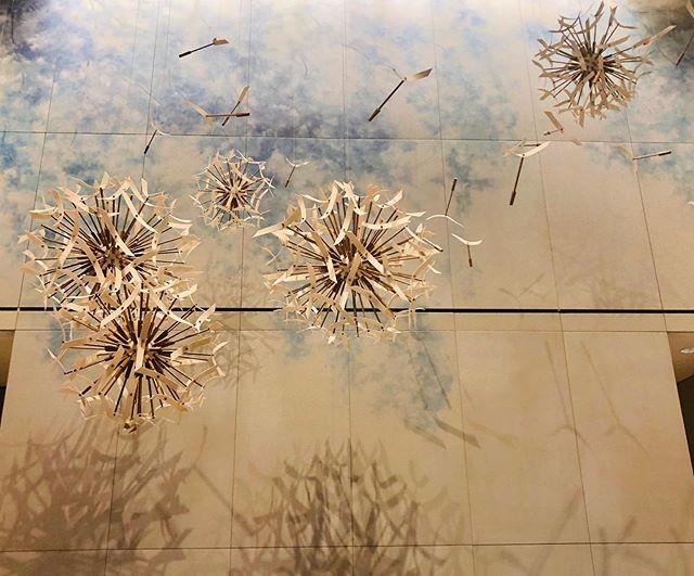 Art installation. Love the shadows.