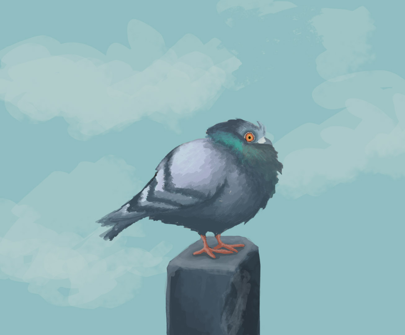Day 11 - Pigeon on pillar.jpg