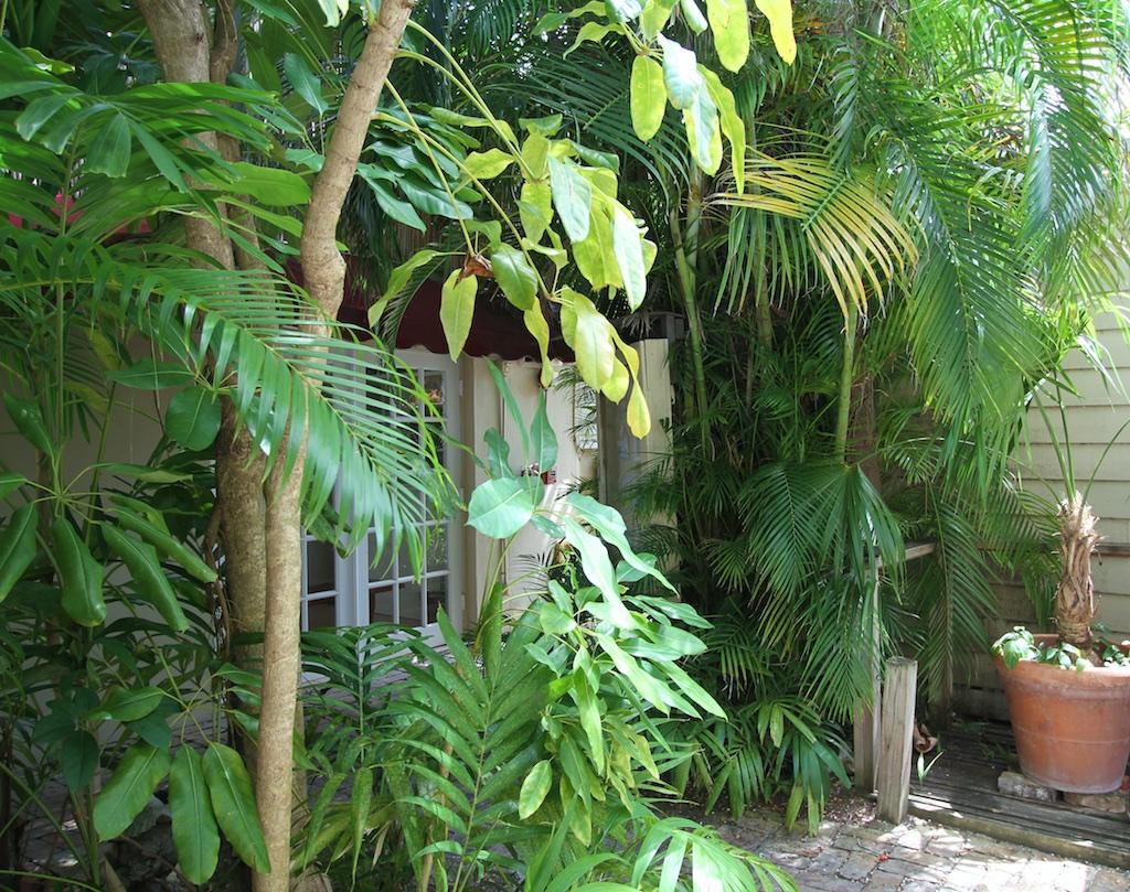 lush garden areas.