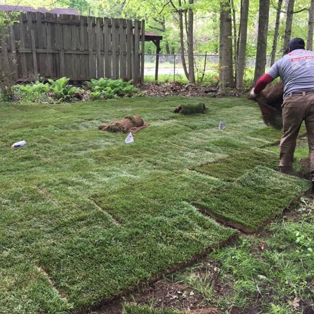 We are proud to be part of a new revolutionary product of Scott's. They have developed a new shade tolerant sod named ProVista. There is no prep required, you just lay it over the existing area. We were asked to do the first ever installation in Ohio or anywhere for that matter. We installed it at one of the Scott's developers personal residence. Happy to be part of this project !!!