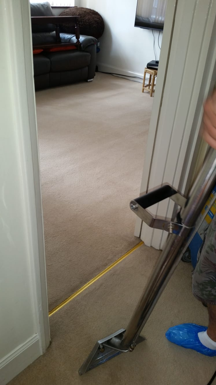 hallway carpet clean