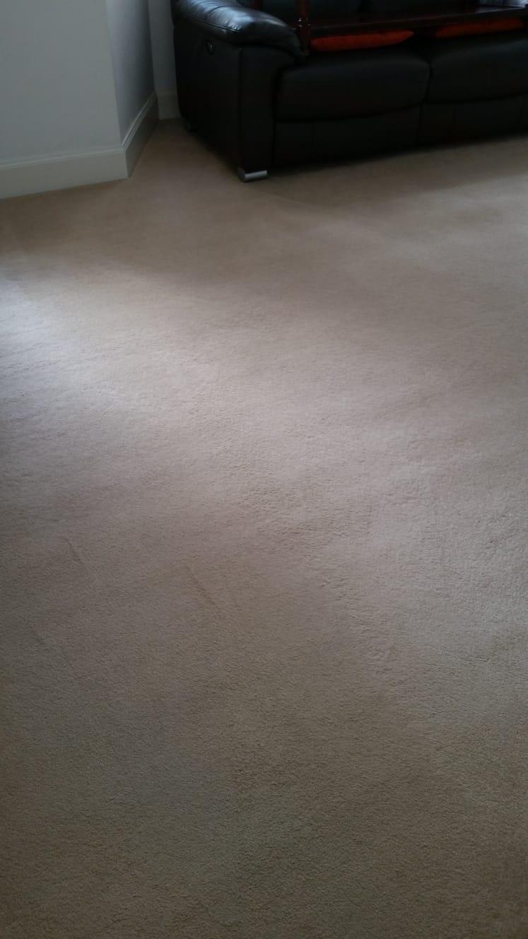 carpet spot removal