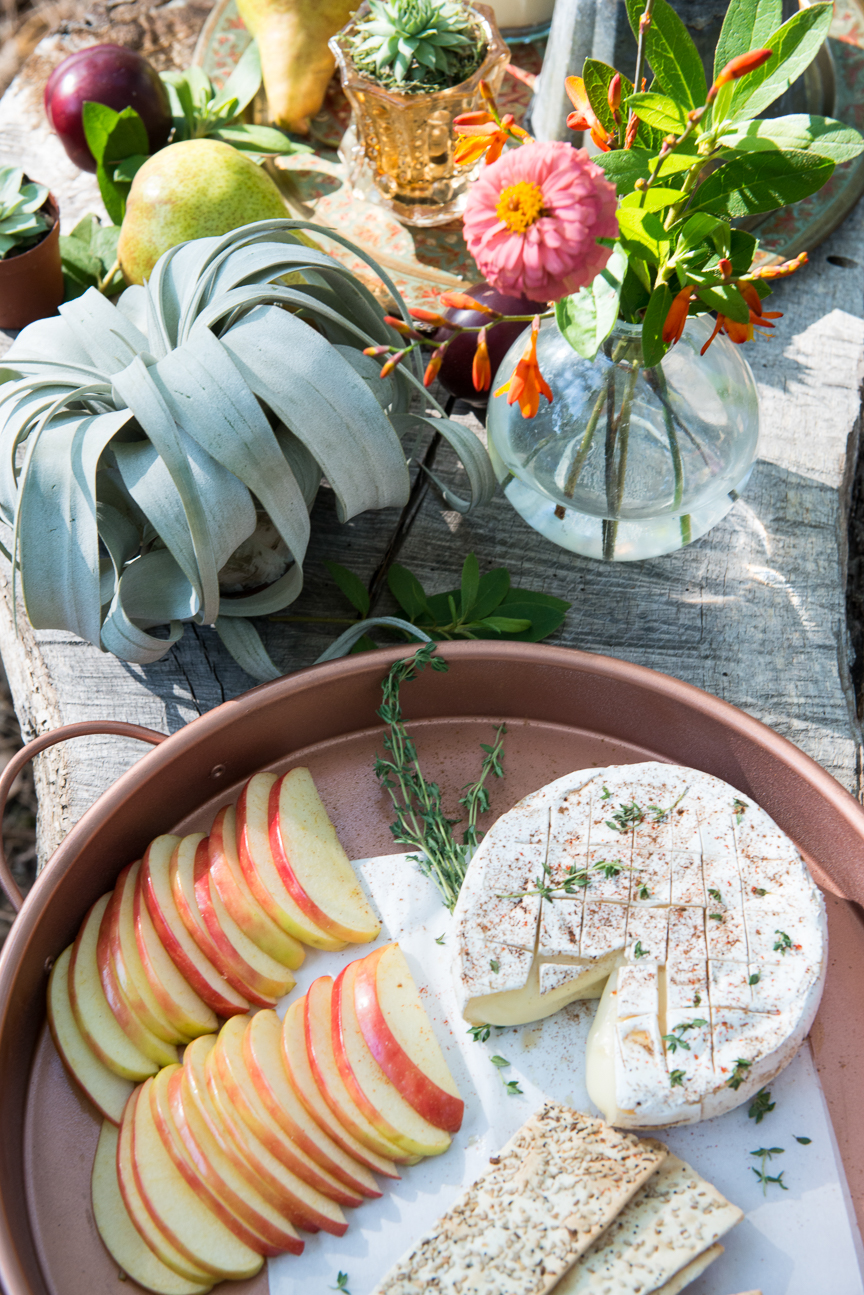 Glamping | Glamping Ideas | Glamping Decorations | Fall Vibes | Fall Decor Ideas | Glamping Party | Boho Fall Decor | Cozy Fall Decor | Fall Table Ideas | Fall Tablescapes | Colorful Fall Table | Outdoor Fall Party | Fall Table Centerpieces | Fall Table Decorations | Campfire Brie | Melted Brie Recipe | Paprika Southern