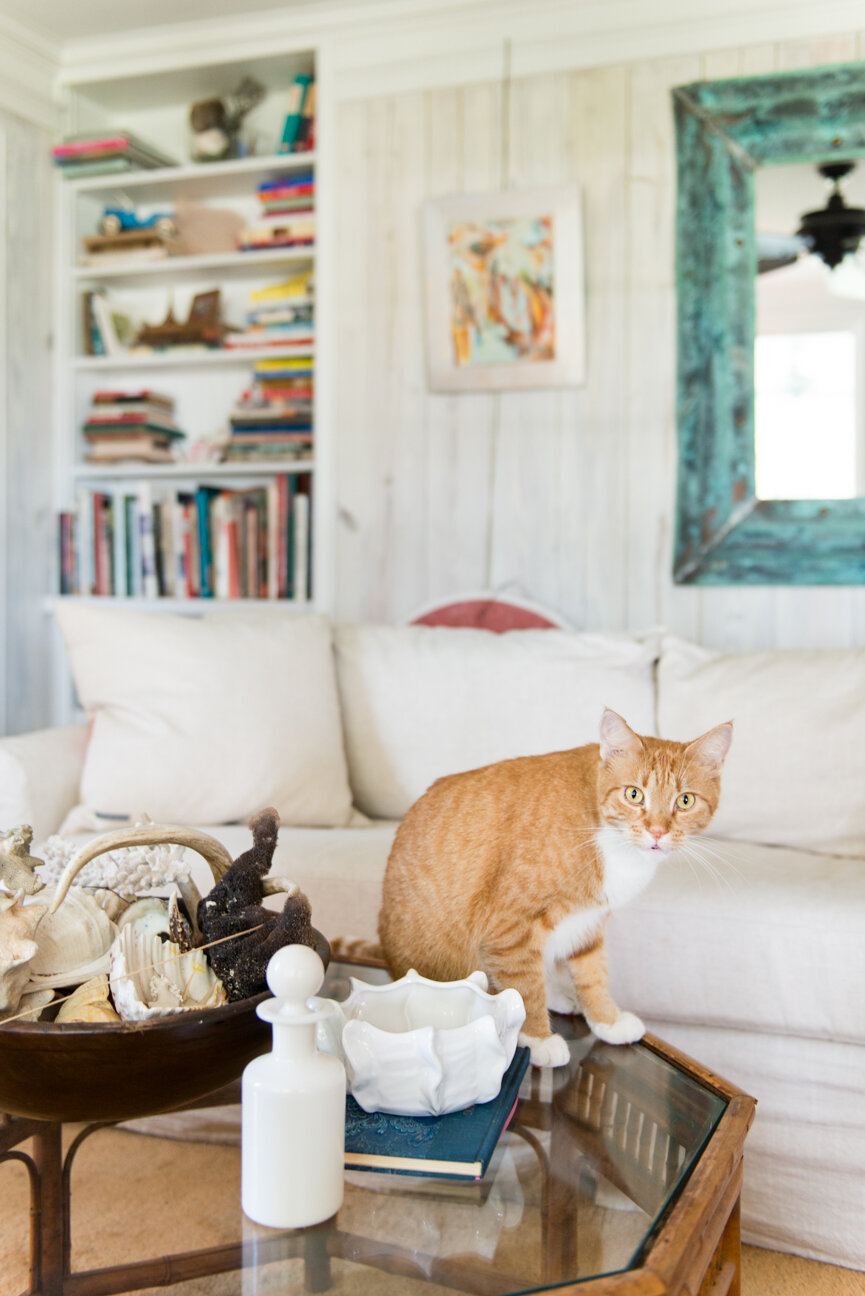 Soulful and Storied   At Home with Bellamy Murphy   Southern Home   Home Decor   Coastal Home Decor   Interior   Interior Inspiration   Den Ideas   White Living Room  Home Decor Ideas   Interior Decor   Paprika Southern