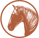 Horseneckwines_PrimaryMark_rust_RGB.png