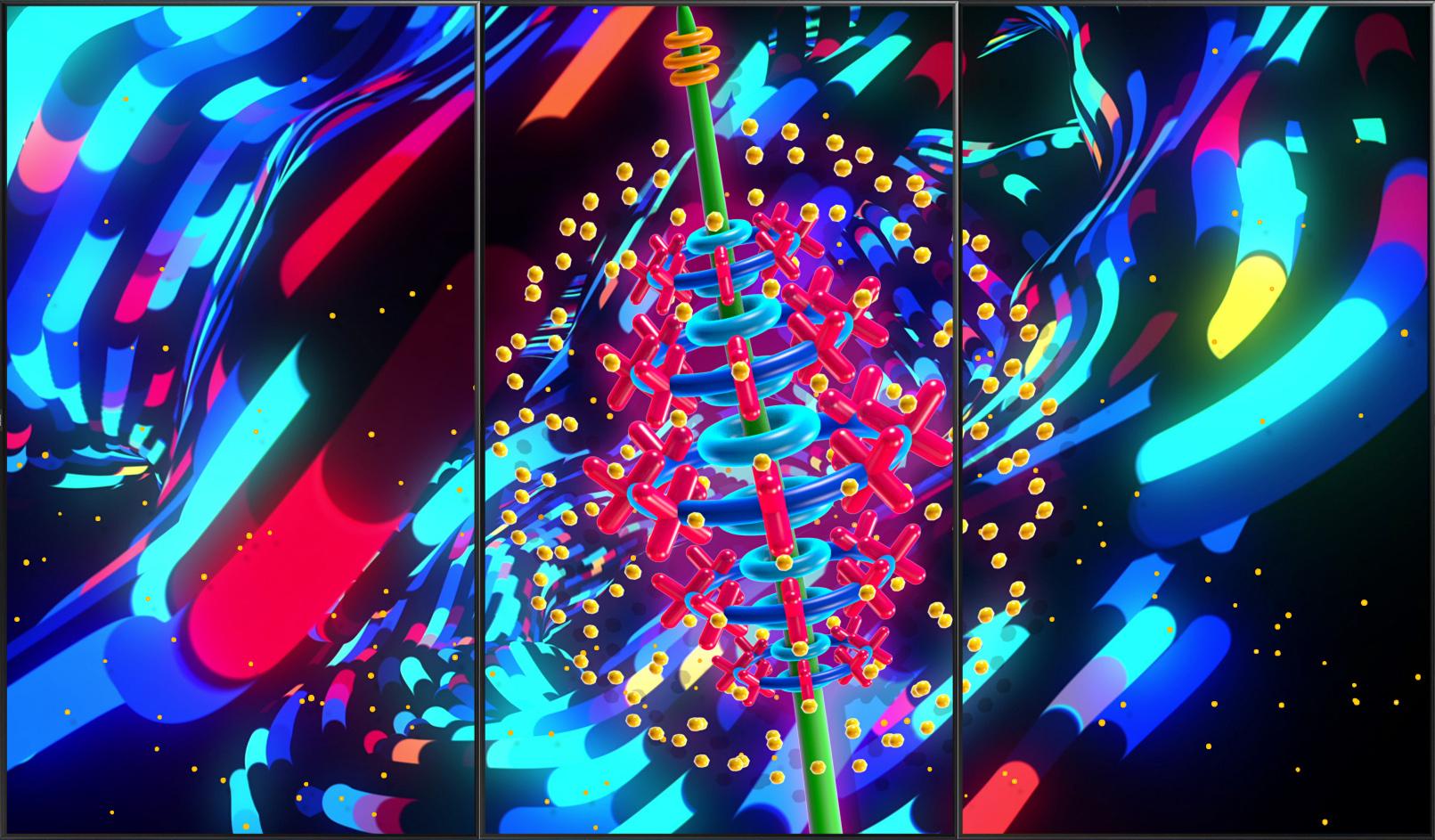 blossom_0006_Blossom - Sample Image - 8.jpg