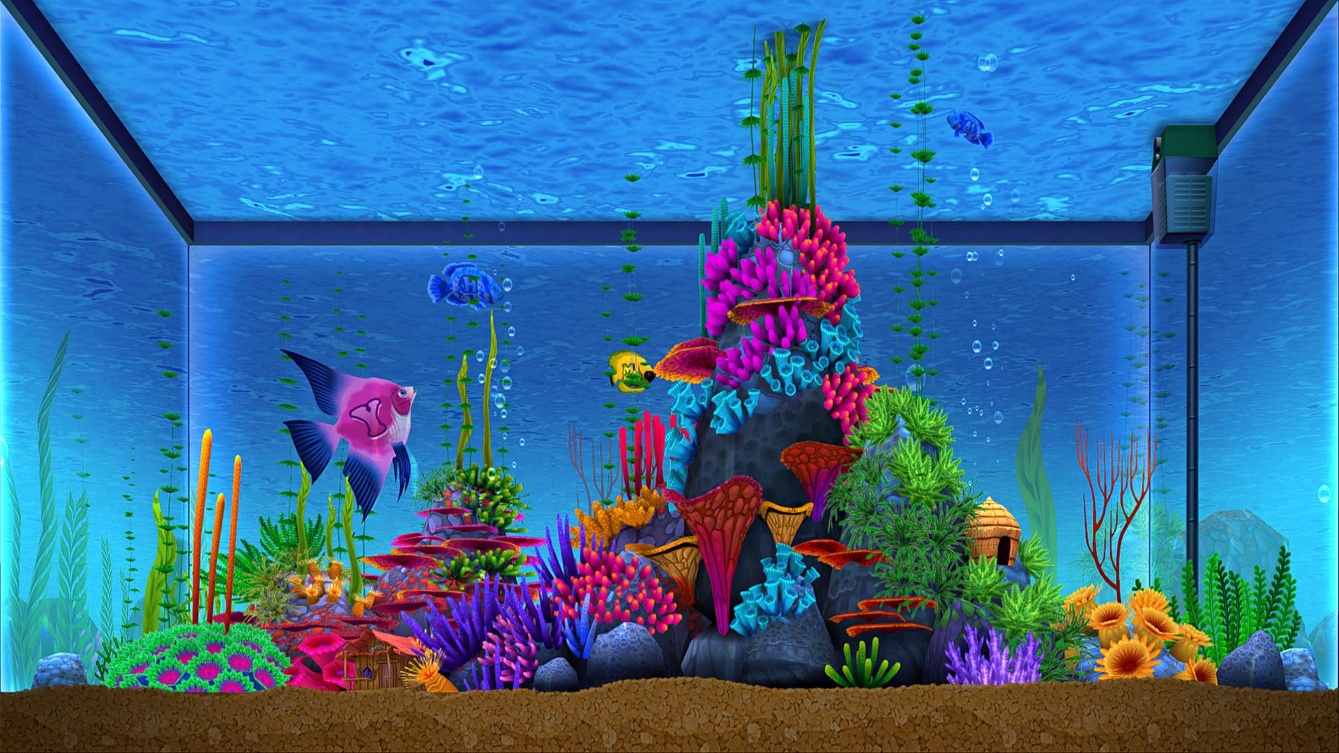 Tabor_Robak_Analphabetic-Aquarium_close_2.jpg