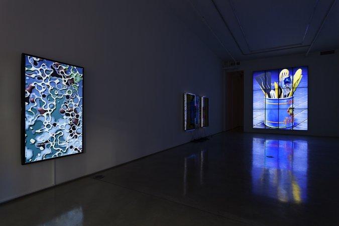 Team Gallery   New York