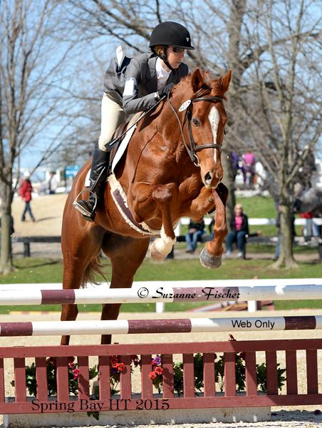 Sing Your Dreams - 15.3 hand 2010 TB mare. She is sired by Oh My Stars and out of Send It All.