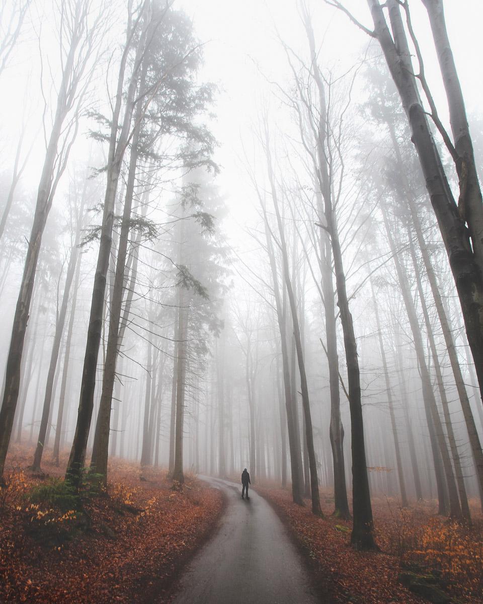 blog_foggy_highlands_havel (2 of 6).jpg