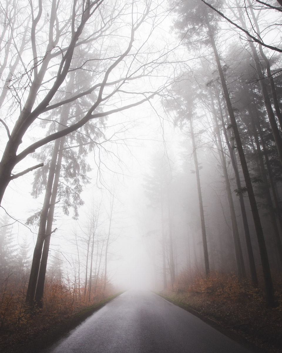 blog_foggy_highlands_havel (4 of 6).jpg