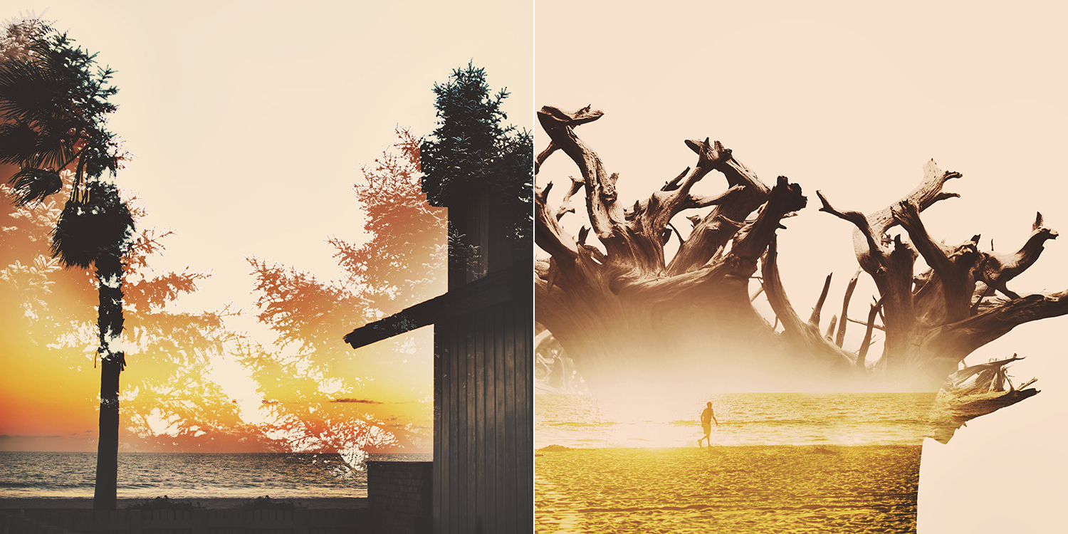 An exploration of juxtaposition using double exposure photo blending techniques. These images mixed the shapes of trees and gnarled branches from photos that I took in my backyard in the dead of winter with the vibrant colours of beautiful beach sunsets in photos that I took in California.
