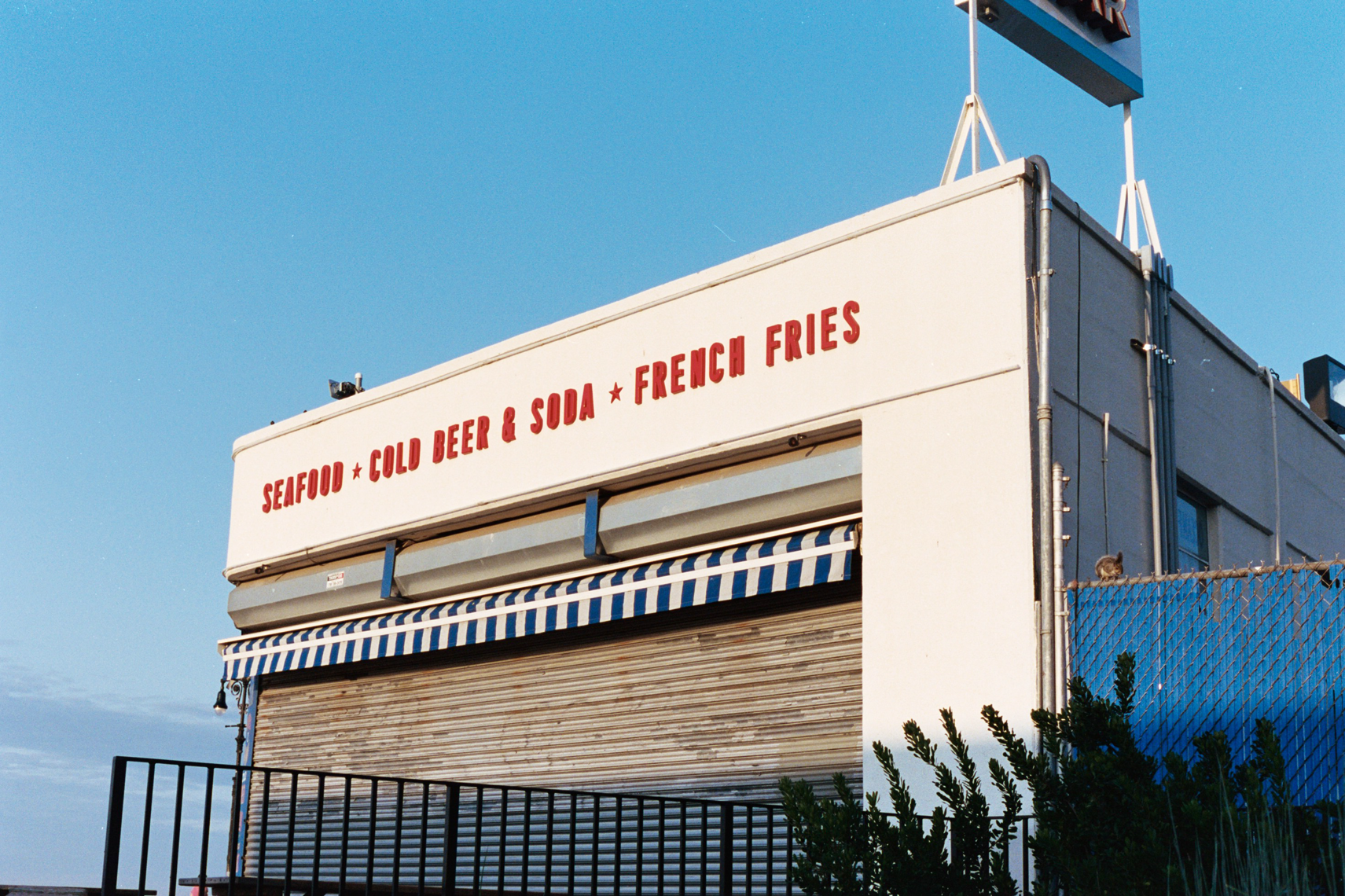 Coney26.png