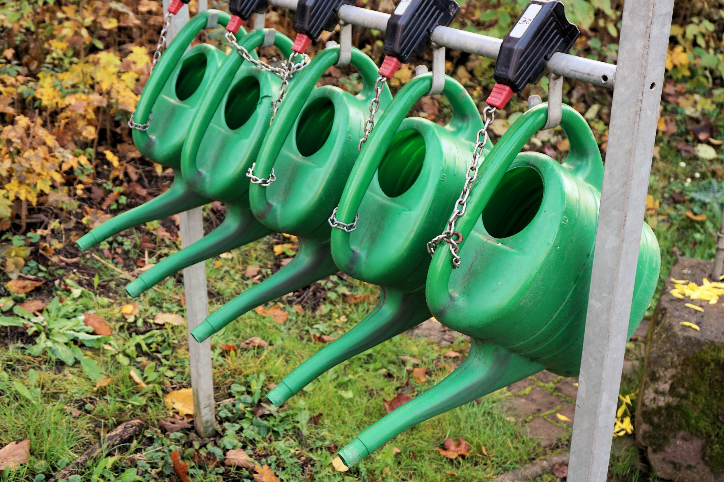 watering-cans-casting-irrigation-1039265.jpg