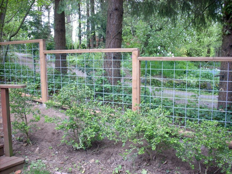 Framed Pasture Wire