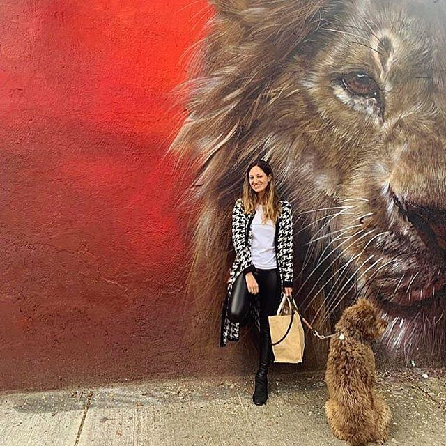 Pablo celoso de Simba 🤷🏽♀️ Aquí traigo puesto uno de mis suéteres favoritos vintage ➰🖤 #vintage #streetart #art #elreyleon #lionking by @sachcrew @streetart_chilango #labradoodle