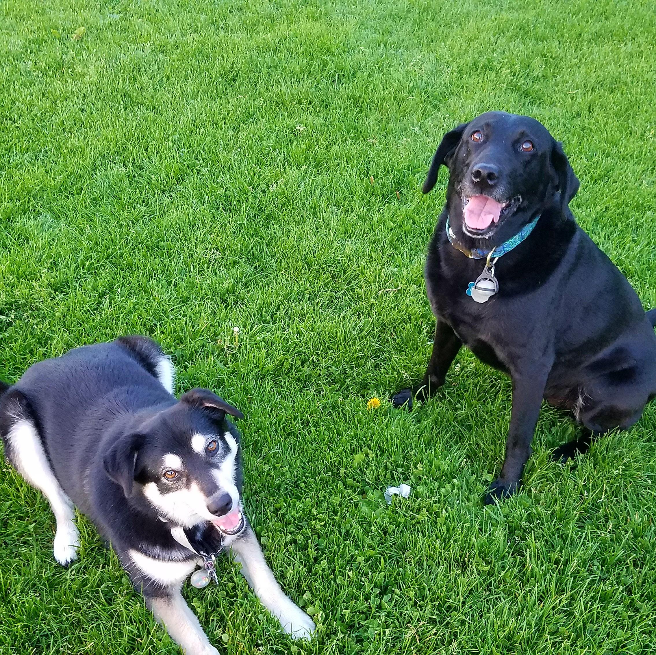 Mavis and Darby