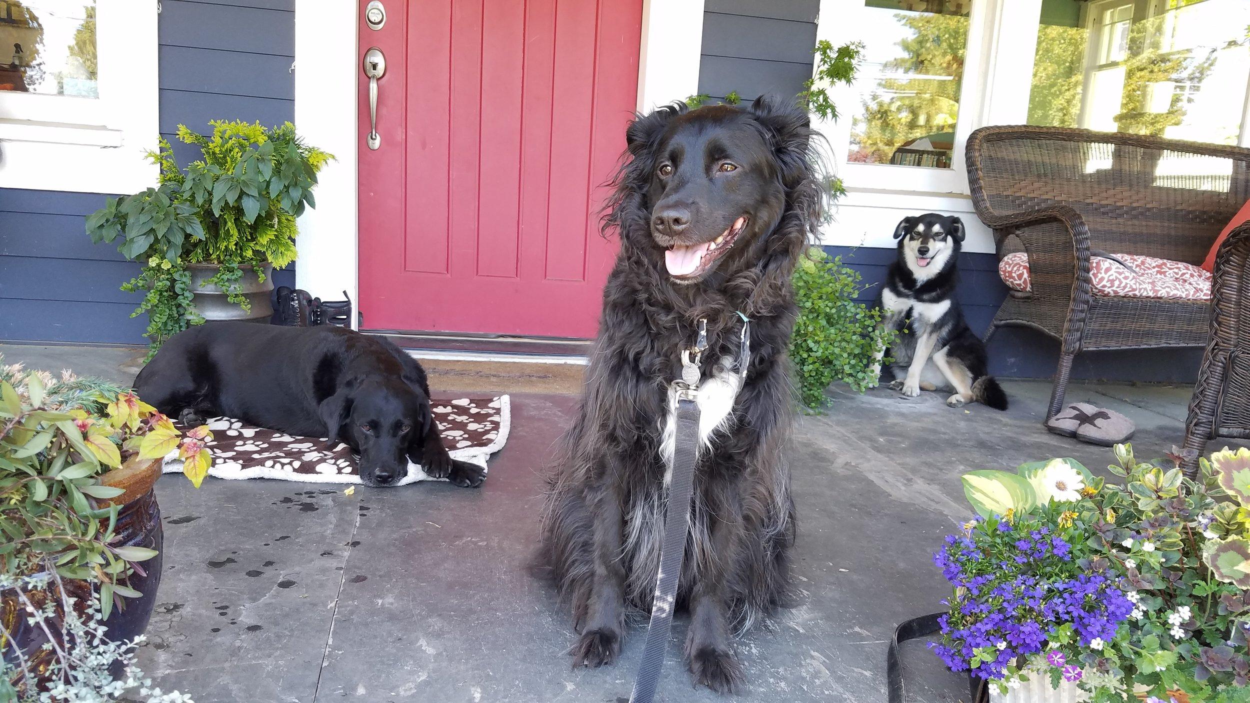 Darby, Ollie and Mavis