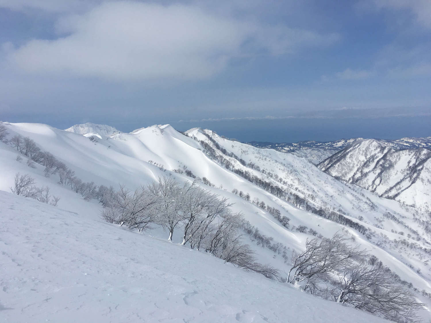 Myoko Kogen has wide open powder highways