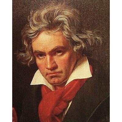 Beethoven2020BV-2.jpg