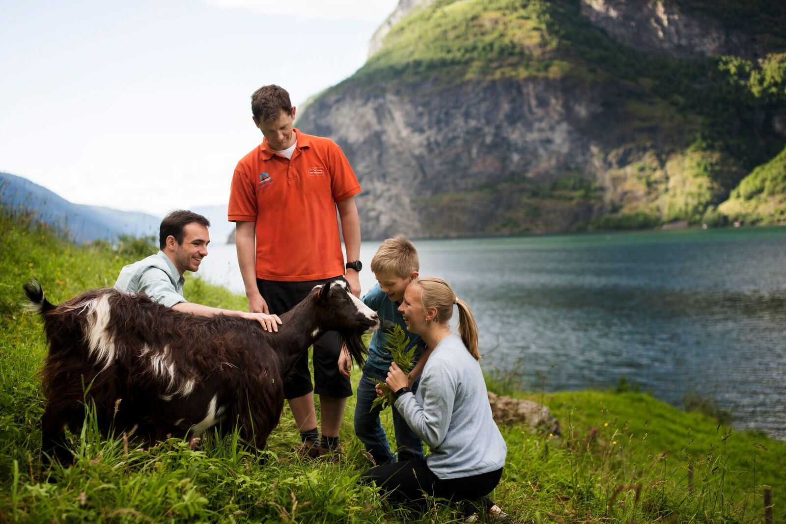 practical information - Time/period: 4 hour roundtrip. Transportation by minivan.June 15th. 2019 - August 15th. 2019 at 10:00-14:00 every day.Meet: 15 min. prior to departure in FjordSafari reception.Price: Adults NOK 1090,- / Children NOK 790,- incl. transportation, lunch and guide. Maximum 8 people.
