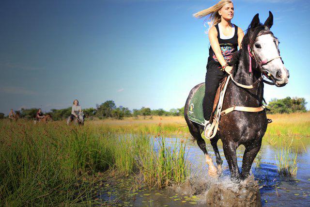horse-safari-zimbabwe-01.jpg