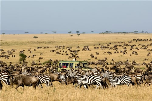 - Tanzania