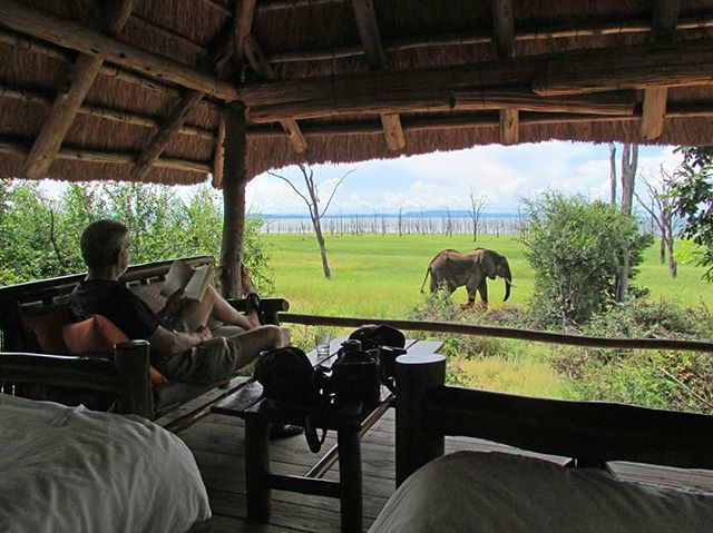 Get in touch with us to experience this! 😊🇿🇼 . 📍Rhino Safari Camp, Matusadona National Park #nyuchisafaris #travelafrica #africa #zimbabwe #travelzimbabwe #travelbucketlist #livetothefullest #travelbugs #lovelife #nyuchiafrica #captureeverymoment #lovewhatyoudo #exploretheworld #africansafaris #businesstravel #zimbabwesafari #africananimals #africanwildlife #businessbuzz #travel #adventurebug #budgettravel #budgetsafaris #nyuchitech #getintouch #followus #destinationbound #traveldestinations #tourism