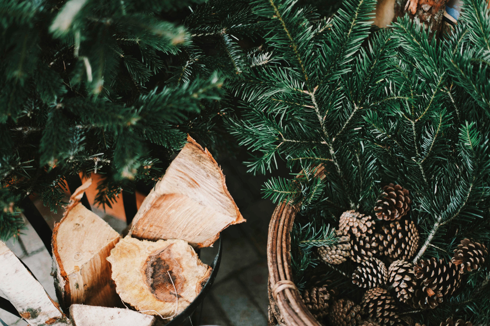 Christmas-Fynn-Valley.jpg