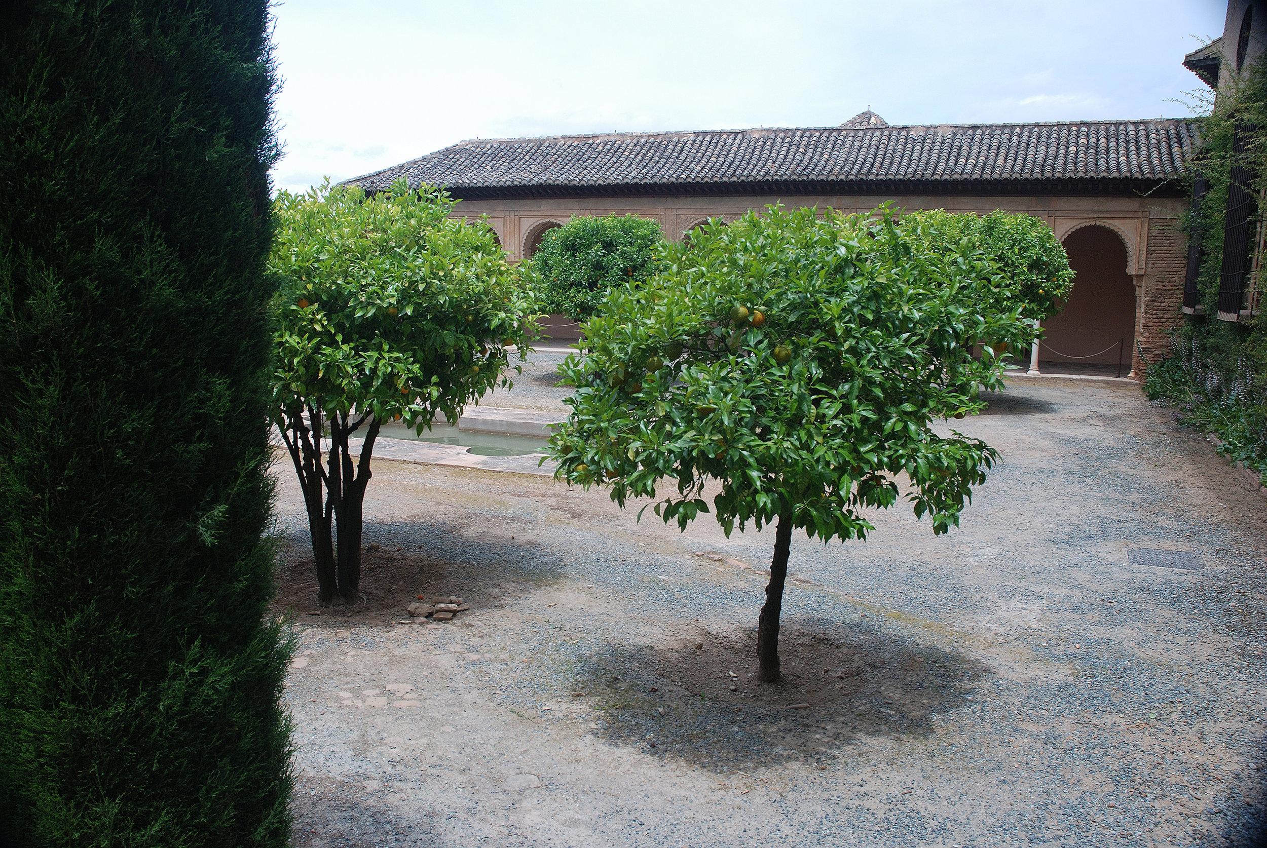 Sanctuary - Alcazar, Seville.jpg