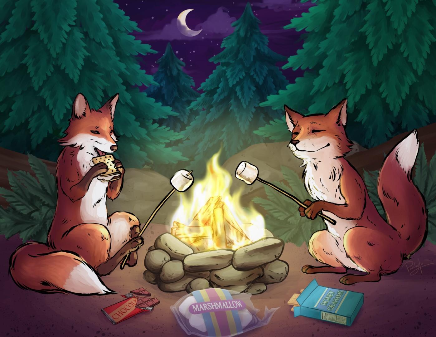 Stella_foxes (Large).jpg