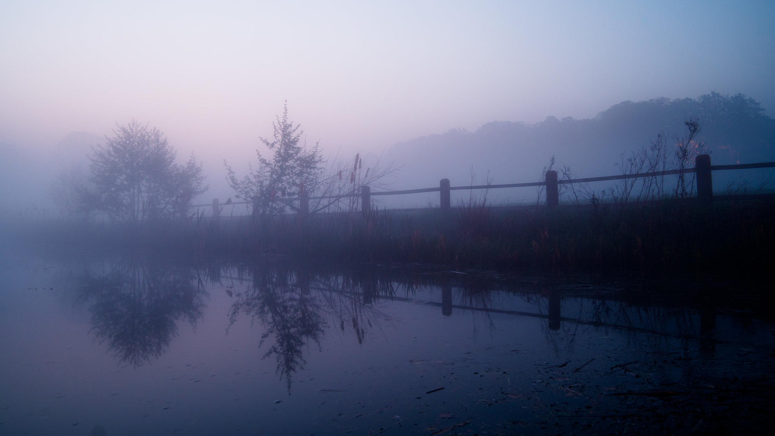 Evening mist after sunset