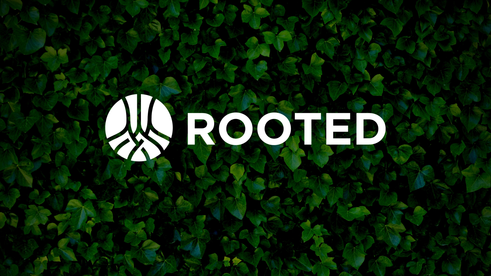 ML ROOTED_WEB.jpg