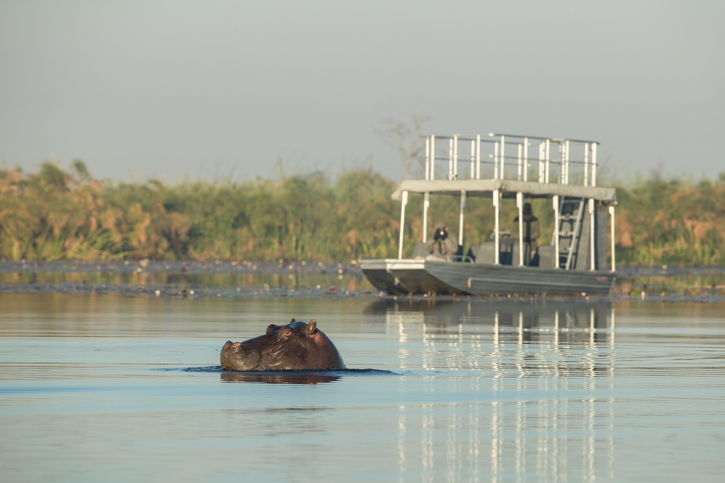 Setari Boat-21.jpg