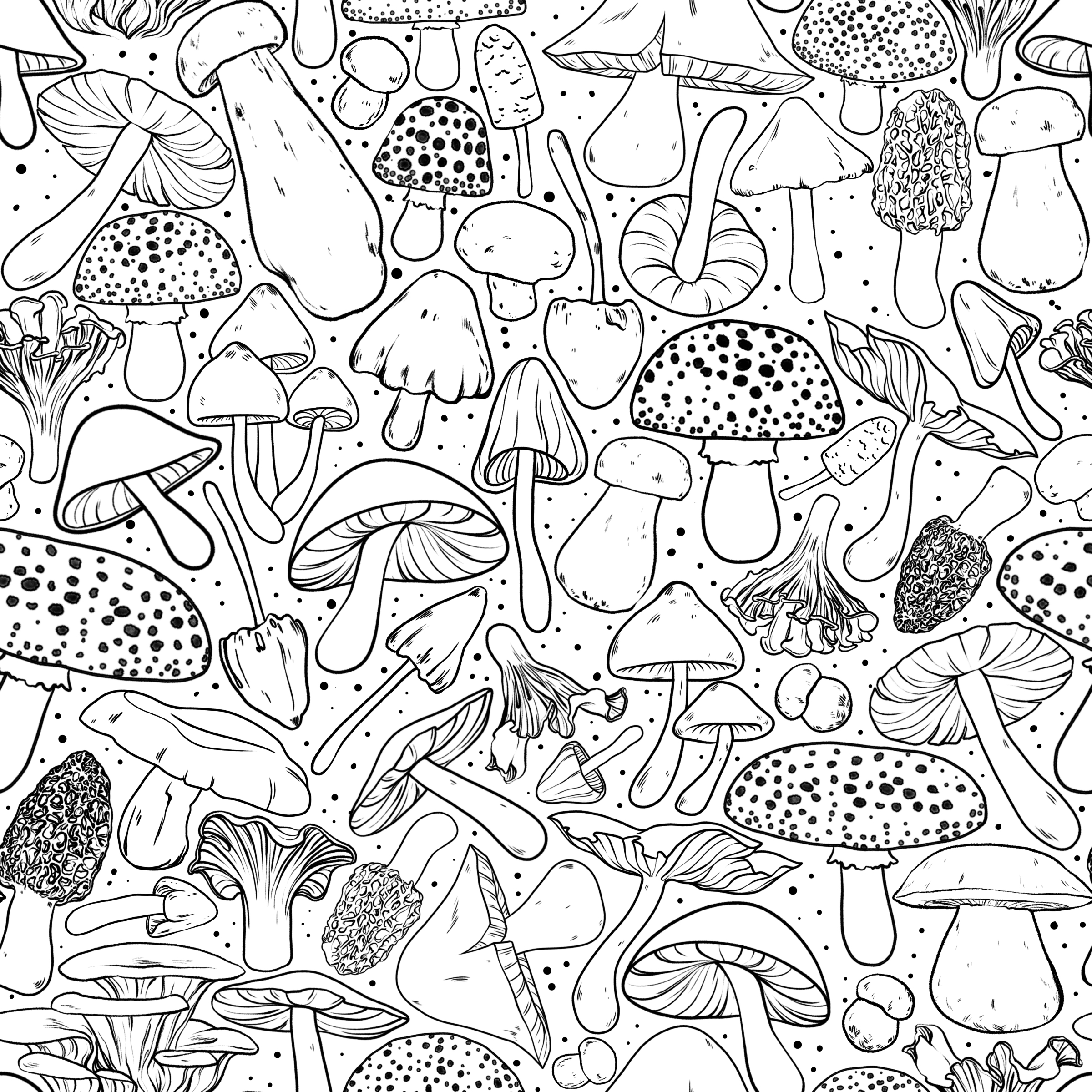 The Lake Black and White Coloring BookDesign Challenge - My Mushrooms design came in 7th in this contest that was partnered with Spoonflower. You can purchase it here!