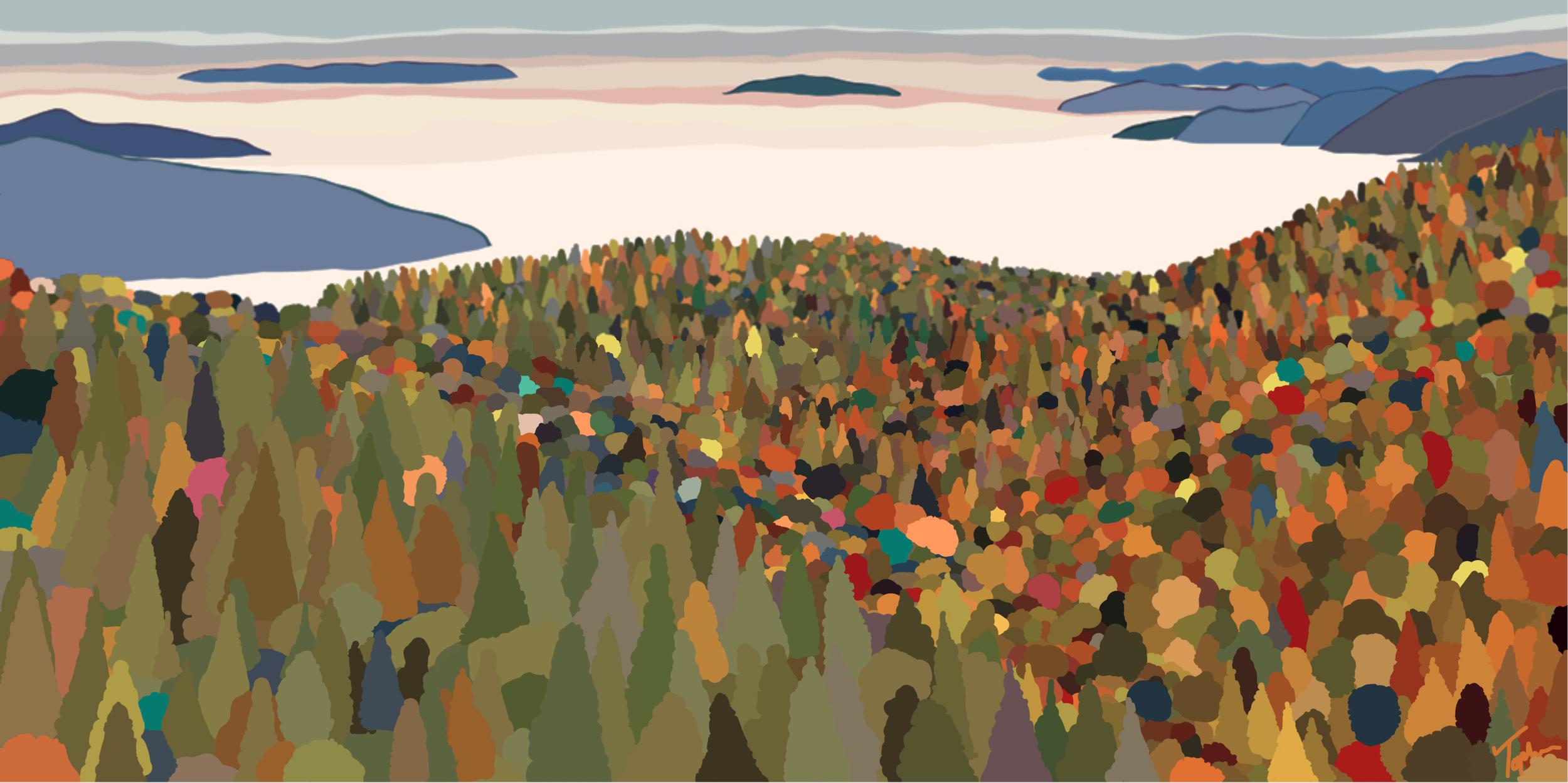Shenandoah National Park  , 2019  Dye Sublimation on Aluminum   ORIGINAL   |   LIMITED EDITION   |  SOUVENIR