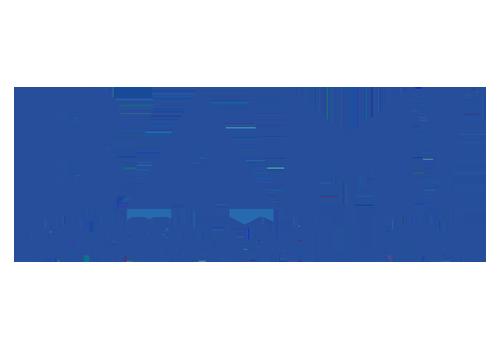 BAM (500x350).png