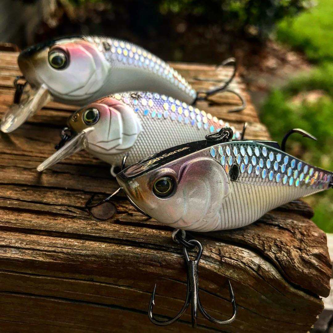 The New Shad Scales Pattern from 6th Sense fishing