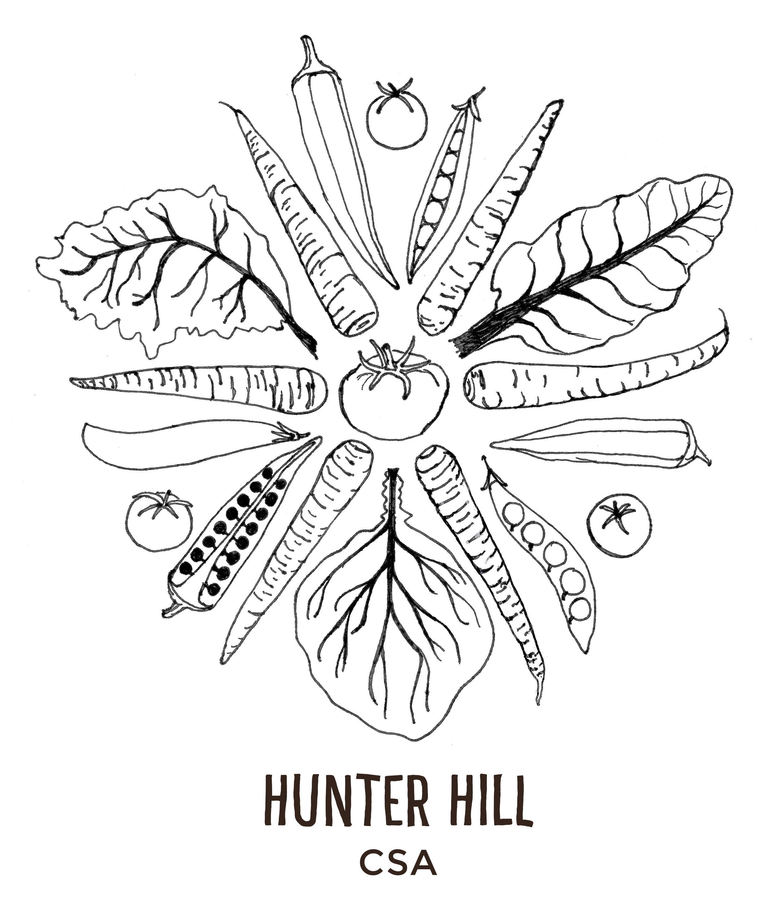 NW hunter hill logo.jpg