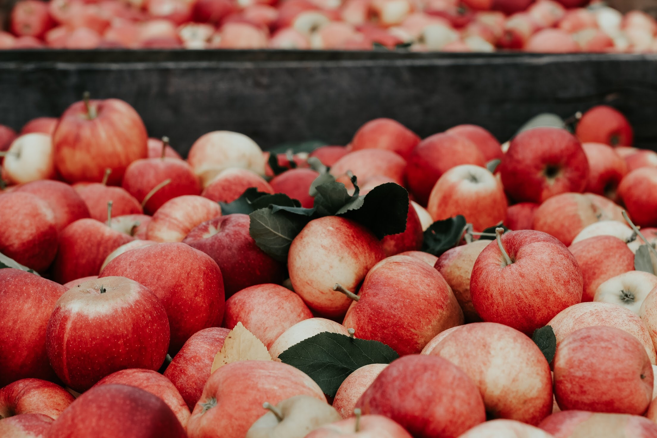 - Economic status and food availability should not be ignored as a limiting or expanding factor when making food choices. Whether it's Whole Foods, the farmer's market or the corner store, our exposure to foods is pre-determined by where we source it.