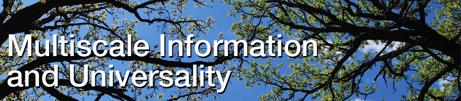 Multiscale analysis can glean important information from Big Data. These articles provide an introduction to the multiscale ideas of information and universality.