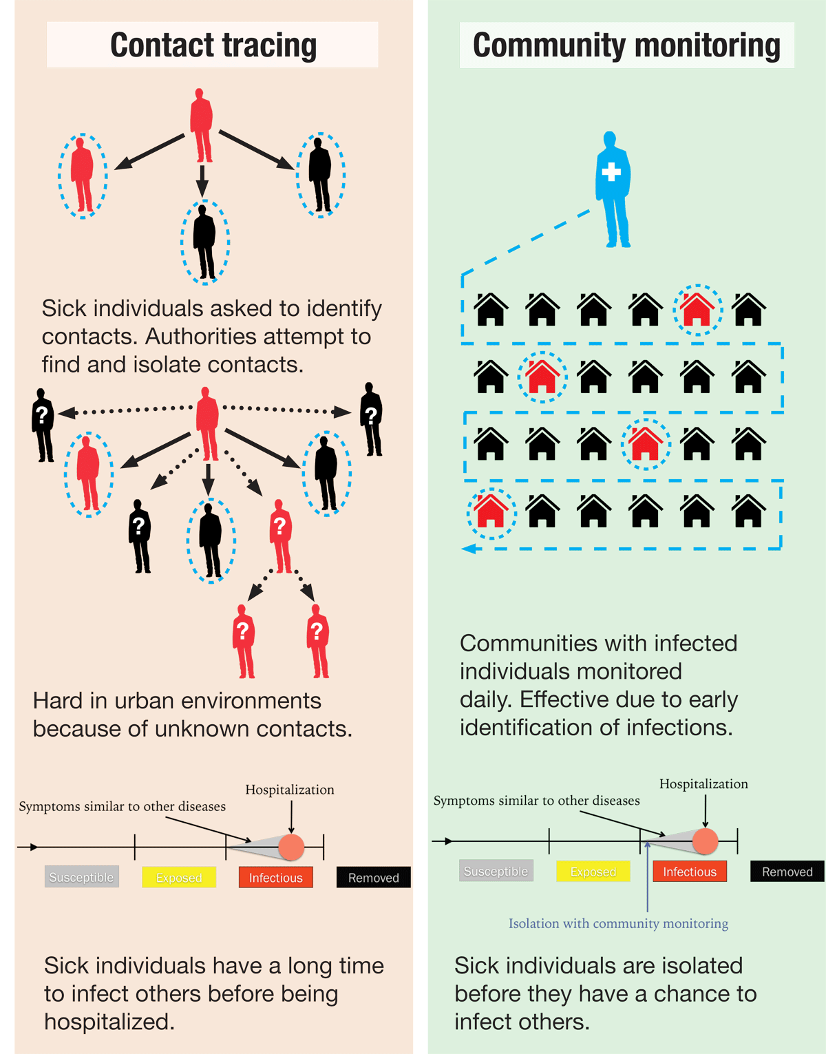 infographic2.png