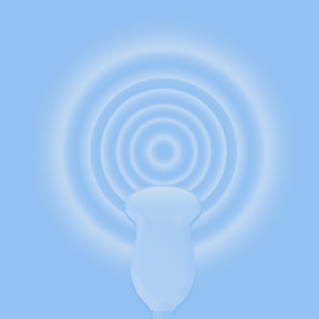 Emergency Medicine Ultrasound -