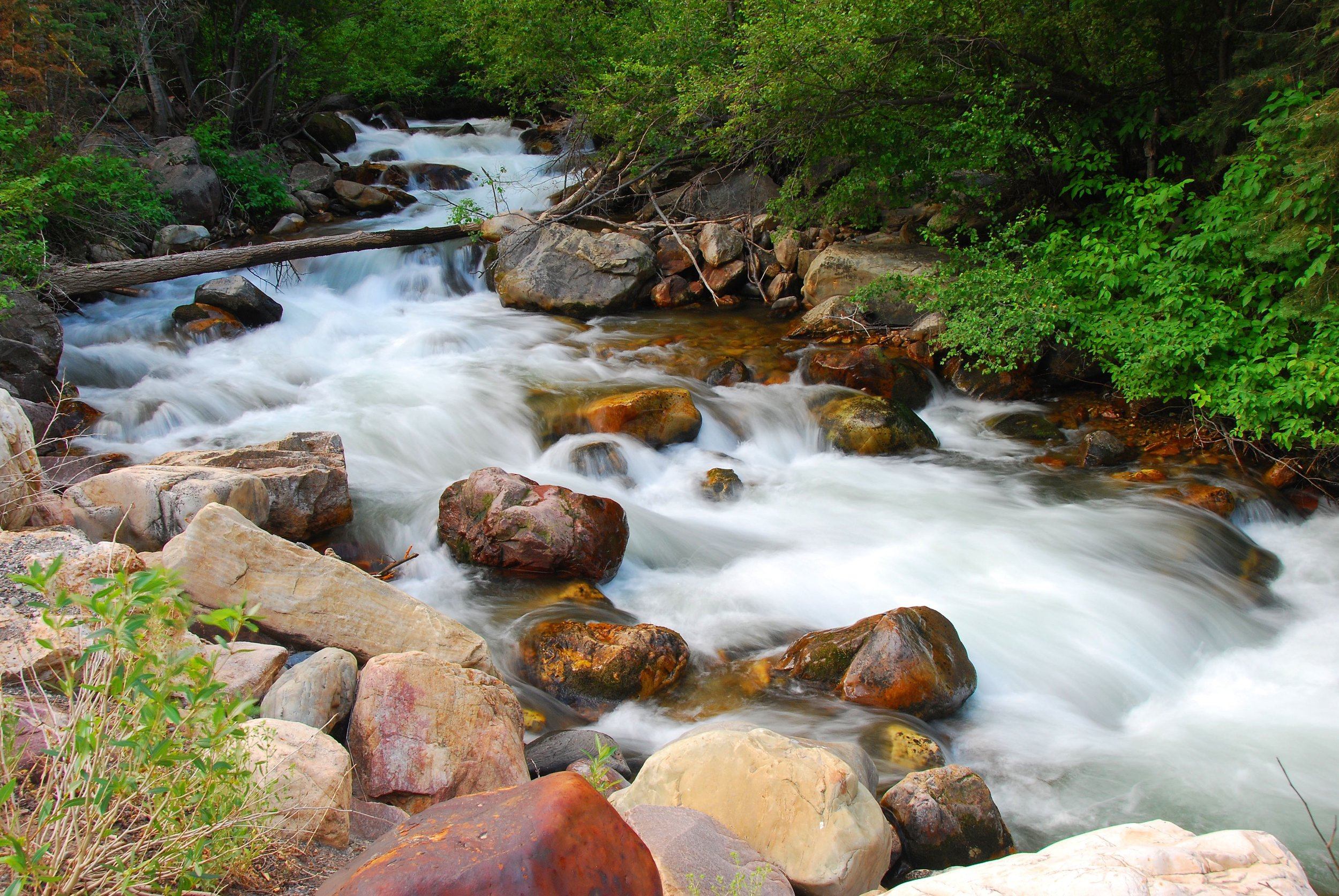 Wasatch stream.jpg