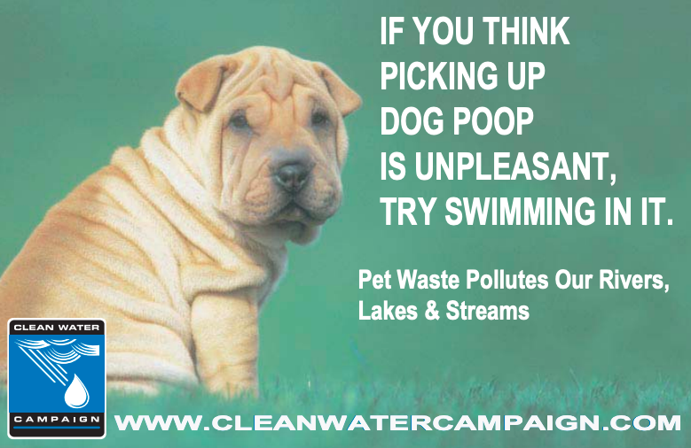 Cleanwatercampaign-FBCover.png