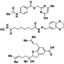 Structures of novel deacetylase inhibitors with varying selectivity patterns