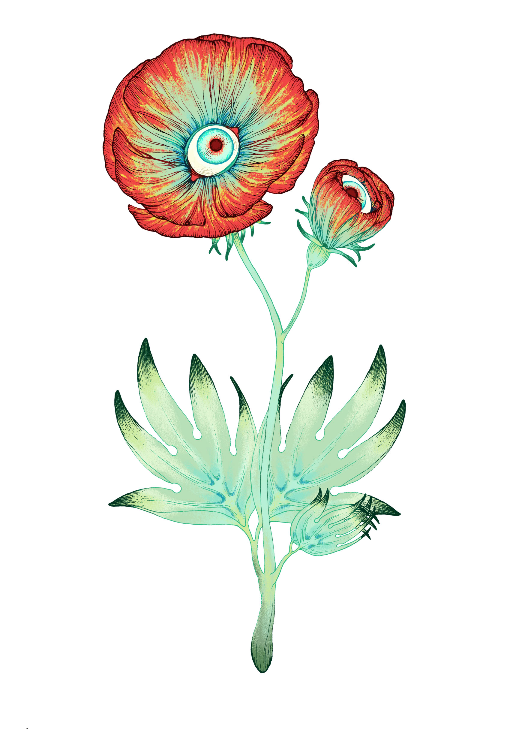 beholder-plant-color.jpg